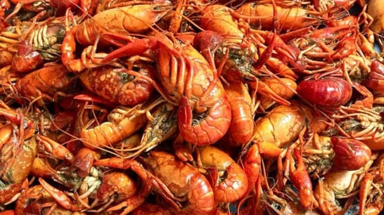 crawfish boiled or stir-fried with shells intact