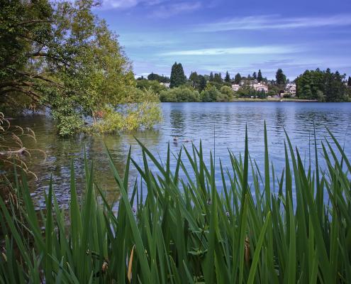 Green Lake, Seattle